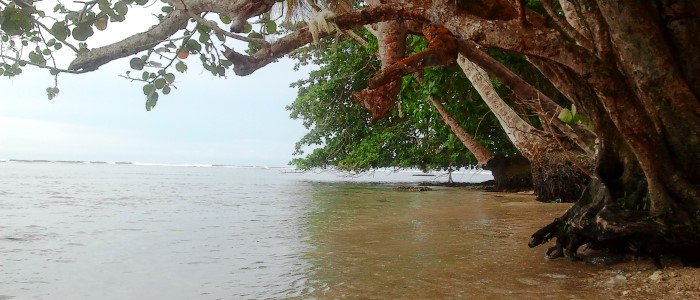 very peaceful beach in costa rica with calm waters