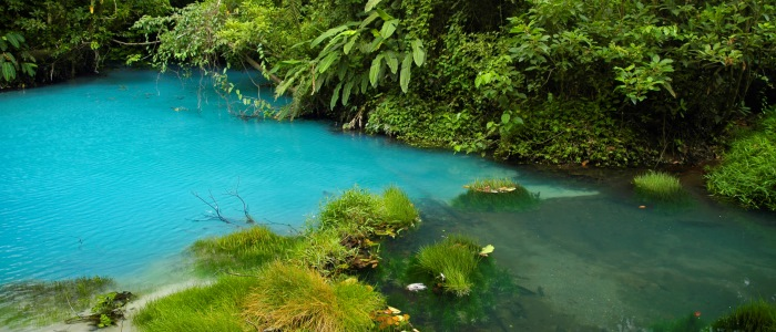 nature-hiking-can-be-done-here-to-admire-the-local-rainforest-or-the-blue-waterfall