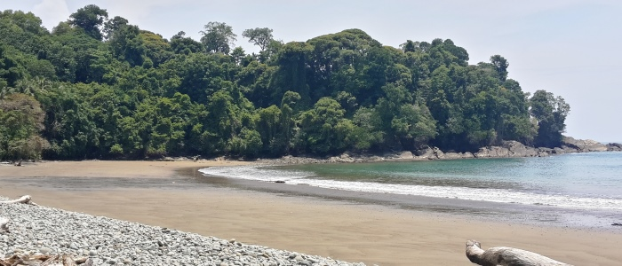 uvita beach is one the emerging beach touristic destinations of costa rica,