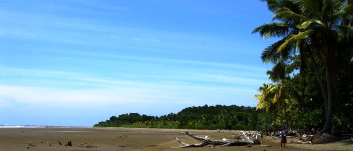 beautiful beach near san jose