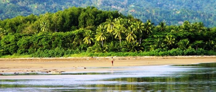 rainforest beaches in costa rica