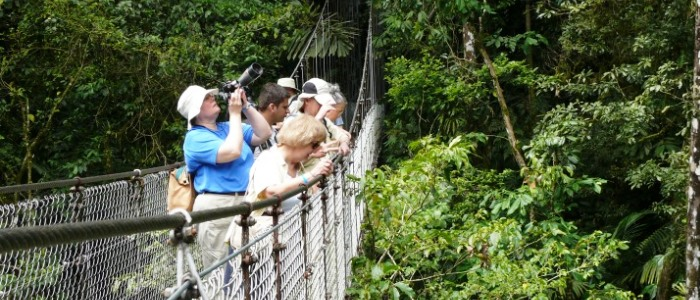 arenal hanging bridges walks is another activity that lots of tourists search for in costa rica