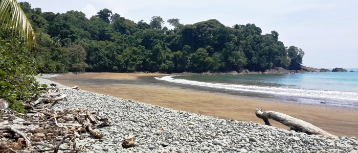 nice beach to see on your costa rica rainforest trip