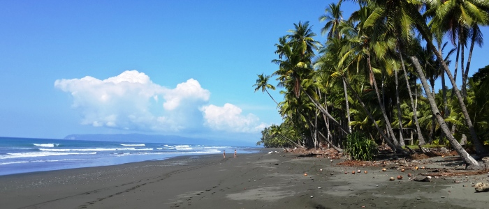 pavones beach in the south pacific coast