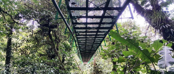 best costa rica hanging bridges tours