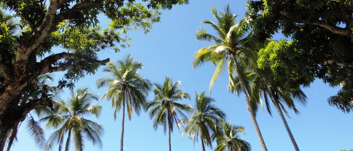 main touristic areas of costa rica