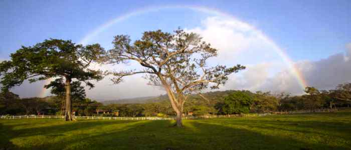 best adventure tour when travelling to costa rica