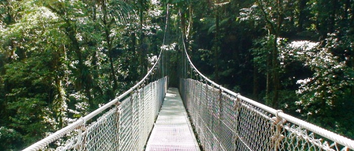 a great tour for your trip to costa rica