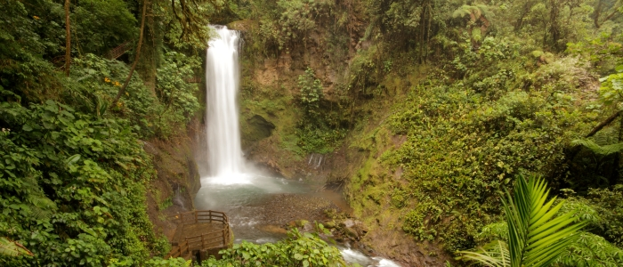 la paz waterfall gardens tour in costa rica