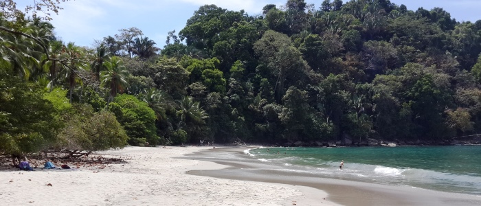 manuel antonio beach is a must see destination when travelling to costa rica