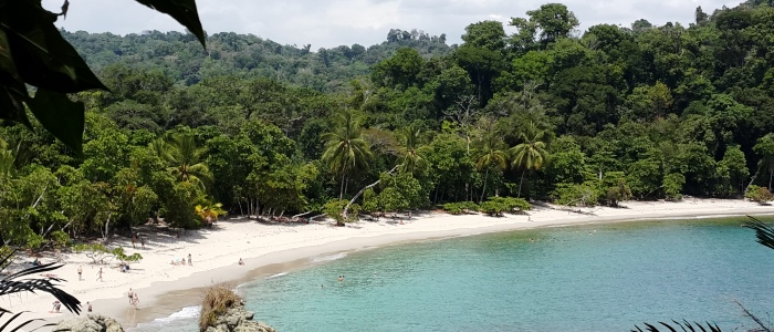 manuel antonio beach is a must see destination of costa rica