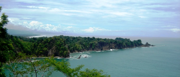amazing view from one of the manuel antonio national park trails