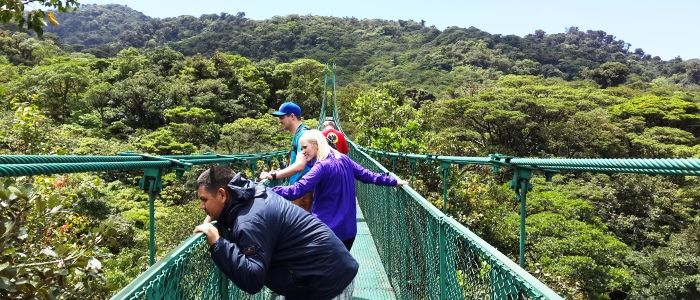 take the best tour to monteverde from san jose