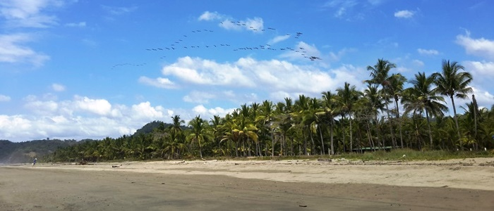 costa rica has a vast number of beautiful beaches in its  coastline