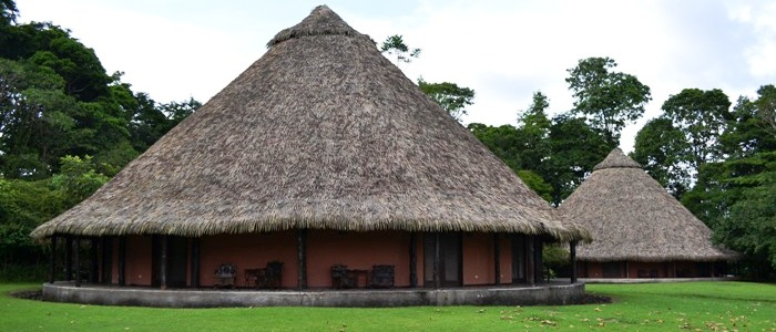 one of the best hotels in the rainforest of costa rica