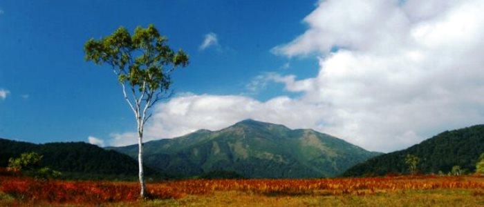 rincon-de-la-vieja-volcano-tour-from-guanacaste