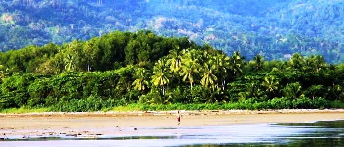 costa rica beaches of the central and south pacific regions