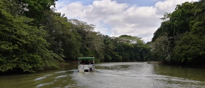 a wildlife boat tour from arenal