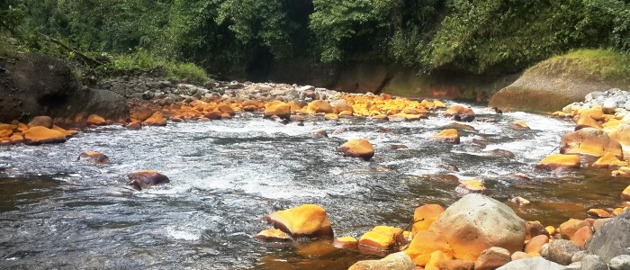a river that begins at the famous poas volcano one of the active volcanoes of costa rica