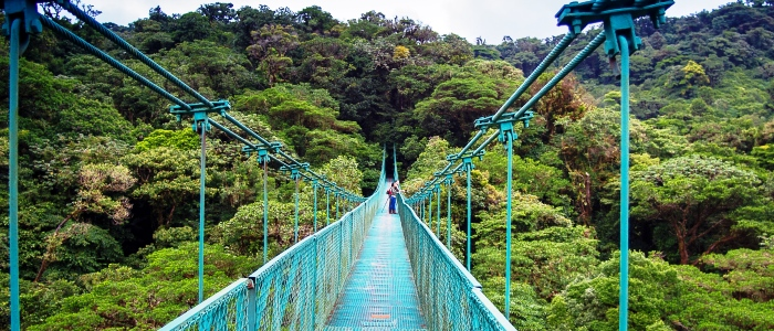 monteverde hanging bridges tour