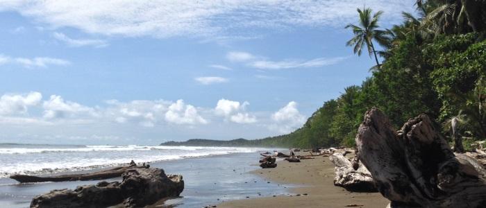 beautiful uvita beach in the pacific of costa rica