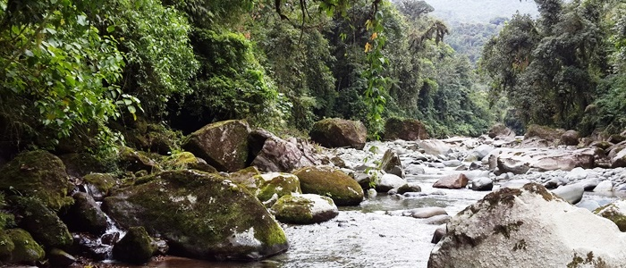 national parks, biological reserves and private reserves in costa rica