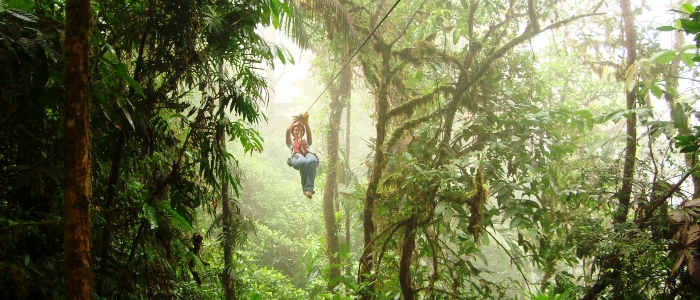 doing zip lining in the cloud forest is a great and unique experience